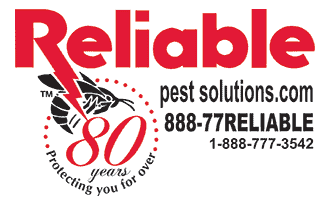 Reliable Pest Solutions
