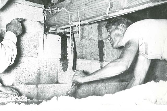 Vintage Reliable Pest Solutions Photo